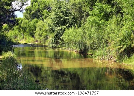 Aravaipa Creek in southeast Arizona is a perennial stream. - stock photo