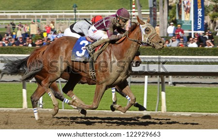 """ARCADIA, CA - DEC 26: The field storms to the finish in the 1st race of the season at historic Santa Anita Park on Dec 26, 2012 in Arcadia, CA. Joel Rosario (red cap) and """"Got Even"""" finish 2nd. - stock photo"""
