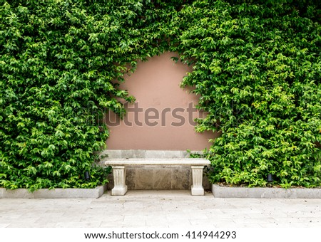 Arch as the decoration of the twine plant on the wall above the bench - stock photo