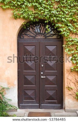 Arched doors and climber leafs - stock photo