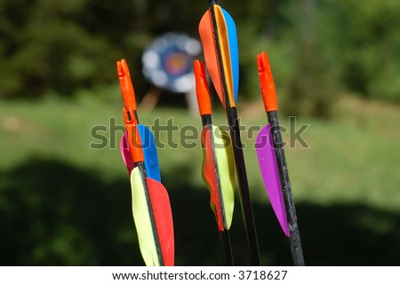 Archery arrows with colorful feather - target in background - stock photo