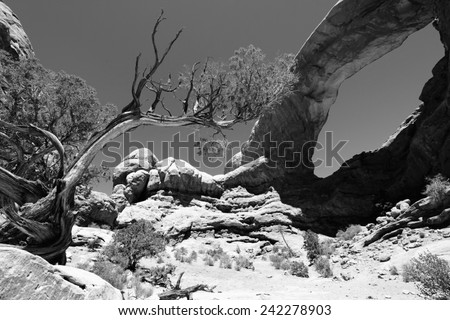 Arches National Park in Utah, USA. Famous Window Arch. Black and white tone - retro monochrome color style. - stock photo