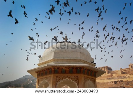Architectural detail of the Amber Fort -  Famous Rajasthan landmark located nearby Jaipur city in north-western India. - stock photo