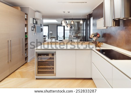 Architecture, beautiful apartment furnished, domestic kitchen - stock photo