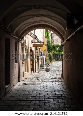 Archway in Vilnius, Lithuania - stock photo