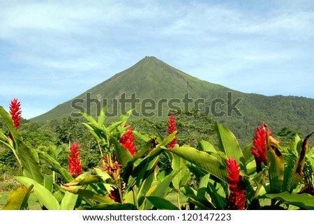 Arenal Volcano in Costa Rica with Red Flowers - stock photo