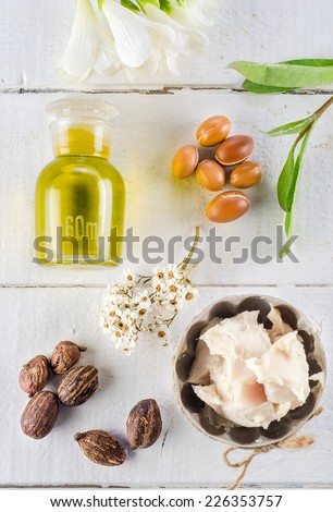 Argan fruits and oil, whit shea nuts and butter - stock photo