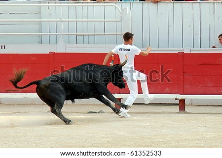 ARLES - JULY 9: Trainees of the school for Raseteur in Arles Valentin Deidda  fights against a Camargue-bull in the arena on July 09, 2010 in Arles, Bouche du Rhone, Fance - stock photo