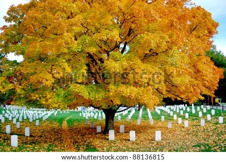 Arlington National Cemetery 7 - stock photo