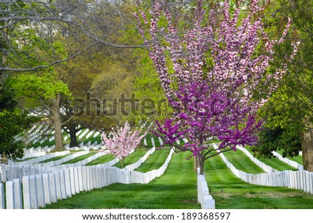 Arlington National Cemetery in Spring - Washington D.C. United States of America - stock photo