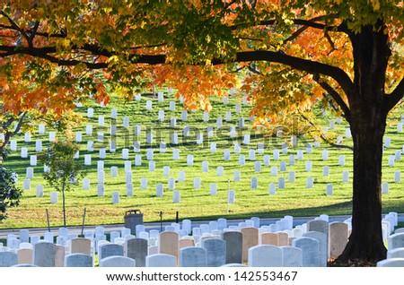 Arlington National Cemetery near to Washington DC, in Autumn  - stock photo