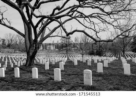 Arlington National Cemetery tombstones - stock photo