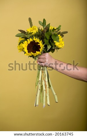 Arm holding sunflowers - stock photo