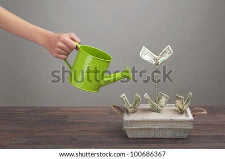 Arm with watering can watering dollar - plants - stock photo