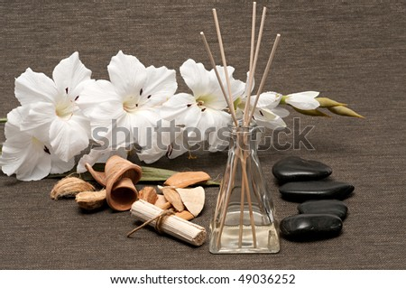 Aromatherapy diffuser, scented wood pieces, rocks and flower - stock photo