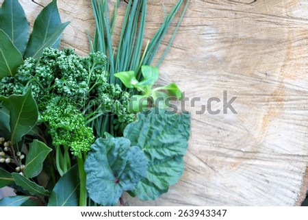 aromatic herbs on a wooden surface  - stock photo