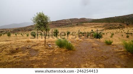 Around Morocco - stock photo