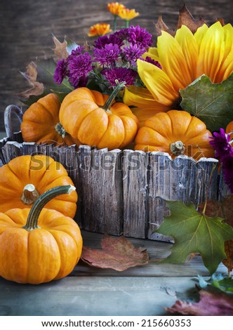 Arrangement from Pumpkin,  Flowers and maple leaves. Autumn nature concept. - stock photo