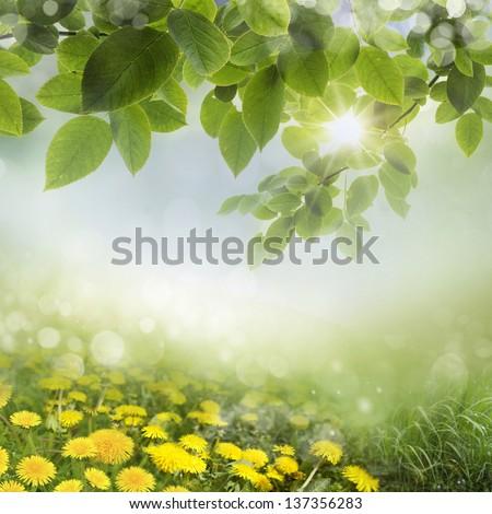 art Beautiful spring flowers background - stock photo