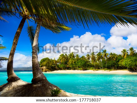 Art caribbean tropical sea  lagoon - stock photo