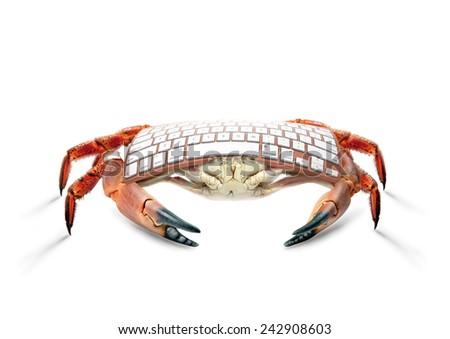 art crab keyboard - stock photo