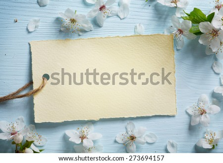 art Spring floral border background with white blossom  - stock photo