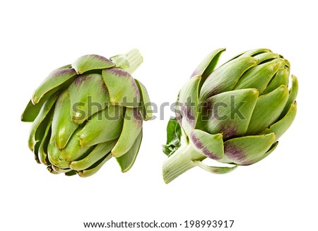 artichoke isolated on white background - stock photo