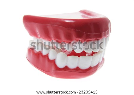 Artificial Dentures on Isolated White Background - stock photo