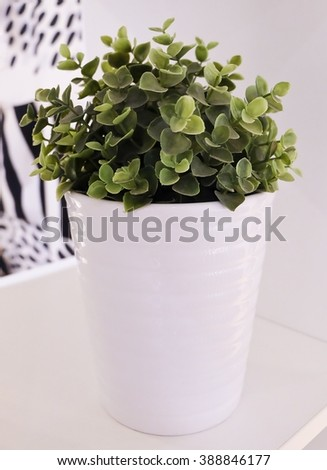 Artificial Green Plant or Artificial Plant in A porcelain Pot for Home and Office Decoration without The Care. - stock photo