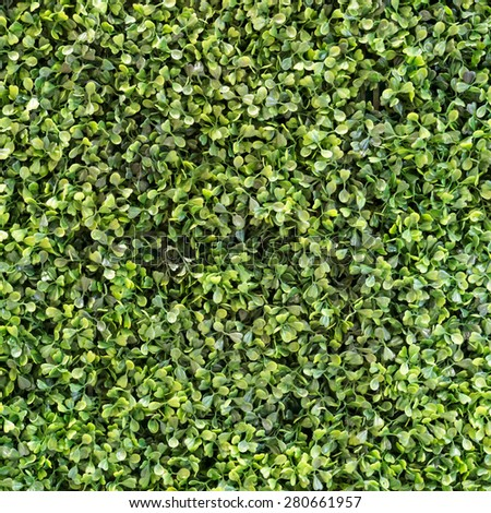 Artificial plant of the vertical garden in coffee shop. - stock photo