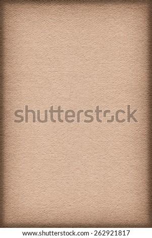 Artist Pale Peach Primed Linen Duck Canvas, coarse grain, vignette grunge texture. - stock photo