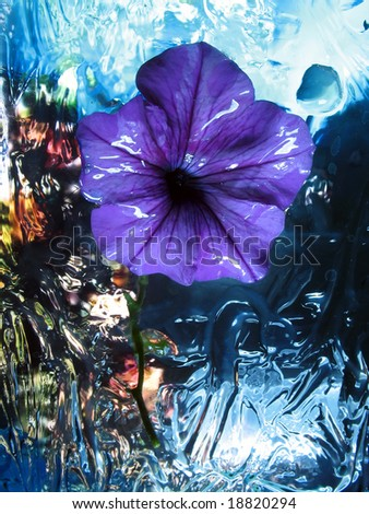 Artistic flower - stock photo