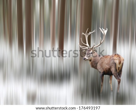 Artistic image of a deer in winter landscape - stock photo