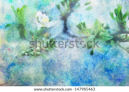 artwork with white blooming flower and splashes of watercolor - stock photo