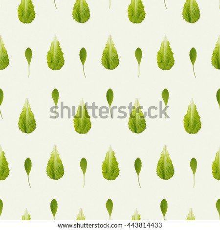 Arugula and lettuce seamless pattern. Combine to create endless size image - stock photo