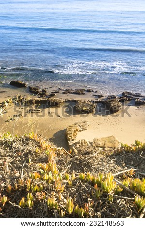 As the sun sets at dusk it casts low, yellow light along a beautiful beach in Santa Barbara, California.  - stock photo