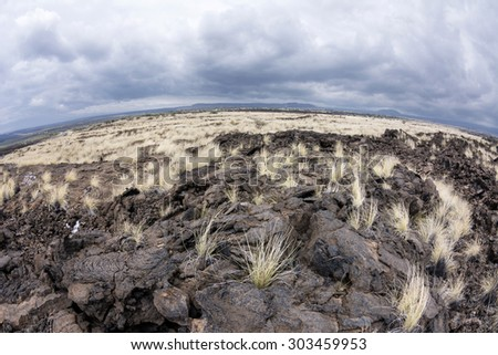 As years of dried lava rests untouched, grass has taken root and made it way up through the porous, hardened earth.  - stock photo