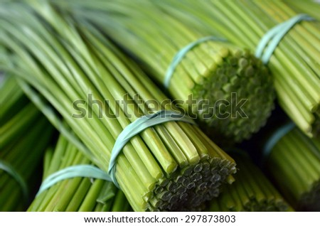Asia Lemongrass bunch in food market. Food background texture. - stock photo