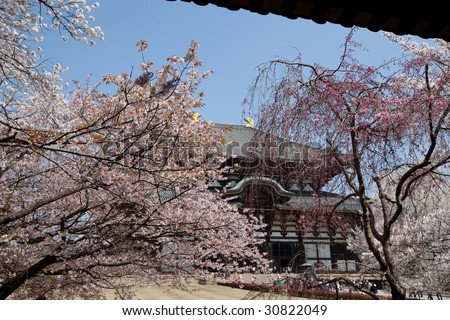 asia temple - stock photo