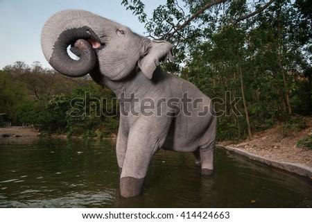 Asian elephant drinking water. - stock photo