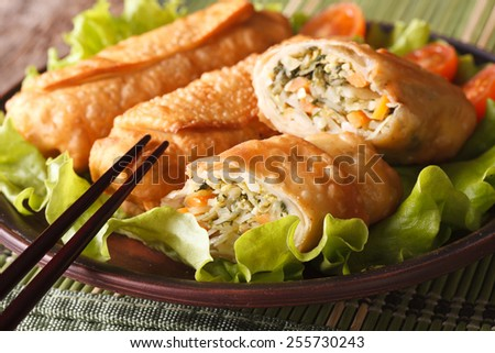 Asian fried spring rolls stuffed with vegetables on a plate and chopsticks close-up. horizontal - stock photo