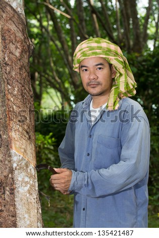 Asian man cutting rubber tree - stock photo