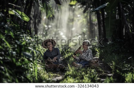 Asian old woman working in the rainforest - stock photo