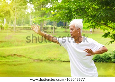 Asian senior man practicing tai chi in the park - stock photo