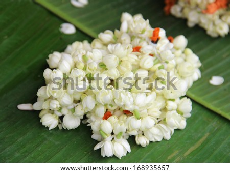 Asian white flowers. Shallow depth of field - stock photo