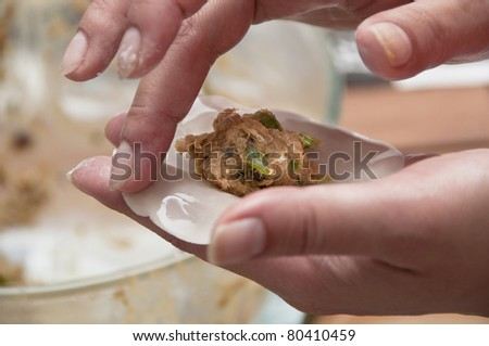 Asian woman preparing some meat dumplings - stock photo