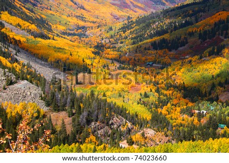 Aspen valley in Colorado during Autumn time - stock photo