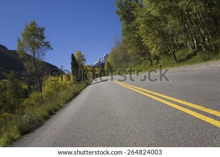 Aspens in autumn lining road to Maroon Bells, near Aspen Colorado - stock photo