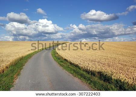 Asphalt Path Between wheat Fields in the Belgian Ardennes - stock photo