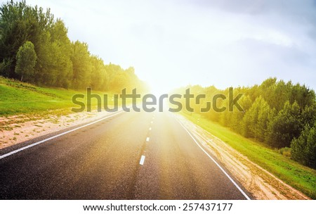 Asphalt road deep in the forest. A sunset. Background in refocuse. - stock photo